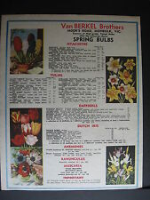 Van Berkel Brothers Moor's Rd Monbulk Dutch Iris Tulip 1956  Advertising