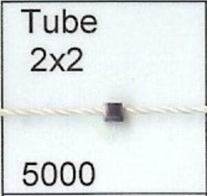 5000 Tube 2x2 Wampum Bead quahog