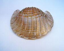 Ercole BAROVIER (1889-1974)  Shell
