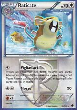 CARTA POKEMON - RATICATE - 88/116 - 70 PV - IN ITALIANO - RARA - USATA