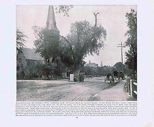 Washington Elm and Memorial Stone-Cambridge Mass - 1894 Vintage Lithograph
