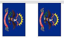 NORTH DAKOTA U.S. STATE BUNTING 9 metres 30 flags Polyester flag