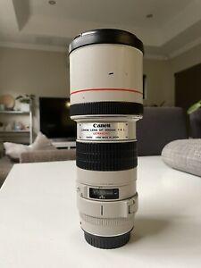Canon 300mm F4 L Lens