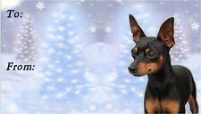Miniature Pinscher Christmas Labels by Starprint - No 1