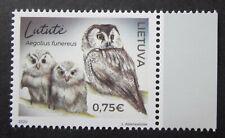 Vögel  Rauhfußkauz Litauen 2020