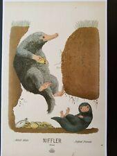 Hagrids Motorbike Harry Potter Wizarding World Art Niffler Poster Print 11x17