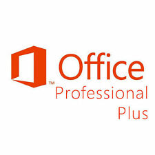 Microsoft Office 2013 Professional Plus; 1 PC; 32/64 bit; producto key; Express