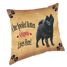 Schipperke Spoiled Rotten Dog Throw Pillow 14x14