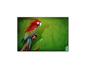 Home Wall Art Decor Splash Of Parrot Oil painting Picture Printed on canvas