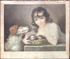 Stampa antica incisione colour Stipple Animal Affection Miller Bonnefoy