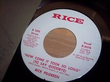 "VG+ 1977 Rick Pilgreen How Come It Took So Long/Billy Beer 7"" 45RPM w/ppr slv"