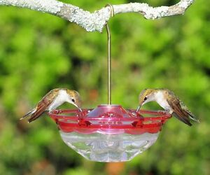 ASPECTS #433 HummBlossom 4 oz HUMMINGBIRD FEEDER, ROSE COLOR, Made in USA     dm