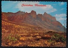 Arizona Postcard Mid 1900s Original RARE Chiricahua Mountains Cactus Desert