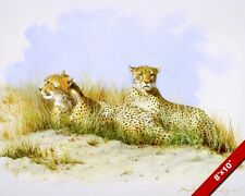RESTING CHEETAHS AFRICAN WILDCATS ANIMAL PAINTING AFRICA ART REAL CANVAS PRINT