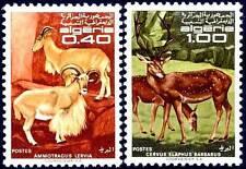 ALGERIE N°477/478** ANIMAUX ,1968 ALGERIA Animals Set MNH