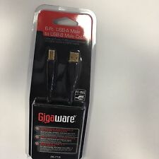 GIGAWARE 6FT USB-A MALE TO USB-B MALE CABLE 26-713