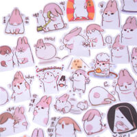 40x Kawaii Chubby Rabbit Pet Sticker Notebook Diario Decoración Juguete EscuePD