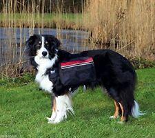 Matériel noirs pour chiens moyens Trixie pour le dressage des chiens