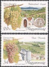 Hungary 2000 Wine Making/Alcohol/Drink/Grapes/Plants/Buildings 2v set (n45538)