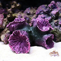 Simulation Korallenriff Fake Pflanze Aquarium Ornament Fish Tank Landschaft Deko