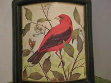 "Original Vintage JIM BEAM Scarlet Tanager Bottle Lockhart Drawing 10X5X2"""