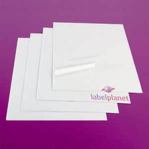 A4 Transparent Labels - Clear, Laser Printer, Waterproof, Round Label Planet®