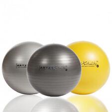 ARTZT vitality Fitness-Ball Professional 4 Größen 6 Farben | Sitzball Gymnastik