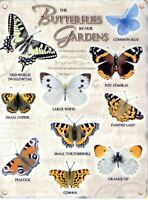 New 20x30cm Butterfly Garden vintage style medium metal advertising wall sign