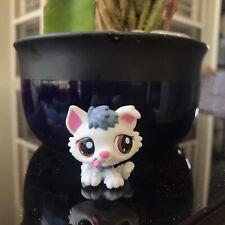 Littlest Pet Shop Puppy Husky #2439 *RARE, AUTHENTIC*