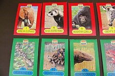 Lot Of 19 Assorted Burger King Kids Club Endangered Species Cards (#5A103)