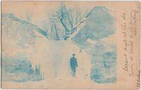 New York NY Real Photo RPPC Postcard c1910 WEST PORTLAND Forest FRUIT FARM Blue