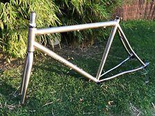 Raghuvanshi titanio para bifurcación de Rohloff, Singlespeed, fixie marco incl.