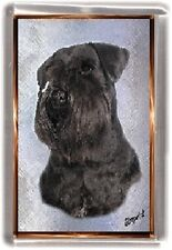 Miniature Schnauzer Fridge Magnet No 3 by Starprint