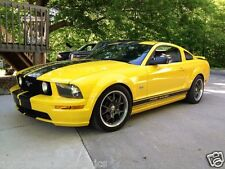 """05 07 08 09 12 14 Mustang 10"""" Plain Rally stripes Stripe Graphics GT LX SHELBY"""