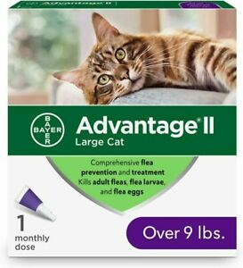 Bayer Advantage II Large Cat Over 9 lbs 2 Monthly Doses NEW