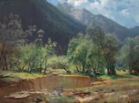 Art Giclee Mountain scenery Landscape Oil painting Printed on Canvas P1378