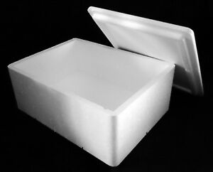 310x230x115/145mm THERMO INSULATION POLYSTYRENE BOX FOOD FISH REPTILE PERISHABLE