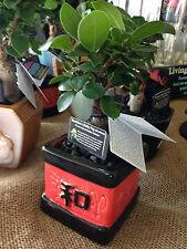 BUDDHA'S BELLY FIG BONSAI Grafted Ficus microcarpa retusa plant in ceramic pot