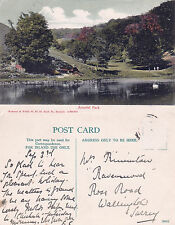 1920's ARUNDEL PARK ARUNDEL SUSSEX COLOUR POSTCARD