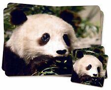 Panda Bear Twin 2x Placemats+2x Coasters Set in Gift Box, ABP-2PC