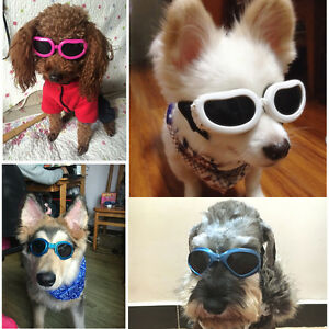 Extra Small Medium DOG Goggles SUNGLASSES UV Eye Wear for Labrador Puppy Poodle