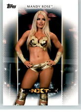 2017 WWE Women's Division #8 Mandy Rose