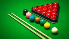 "2 1/16"" Premium Quality Snooker Billiard Balls 15 Red Set Free AU Postage"