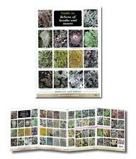 Field Guide to Lichens of Heaths & Moors Laminated Identification Chart Poster
