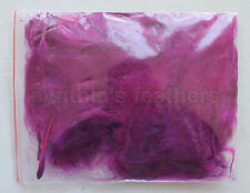 """8g (1/4Oz+) Purple Plum 1~3"""" Turkey Marabou Feathers for crafting, 50-70 counts"""