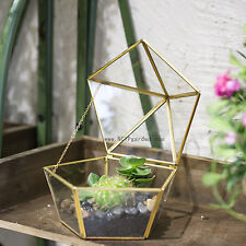 Copper Clear Glass Terrarium Jewel-boxed Shape  Cacti Succulent Planter Box Gift