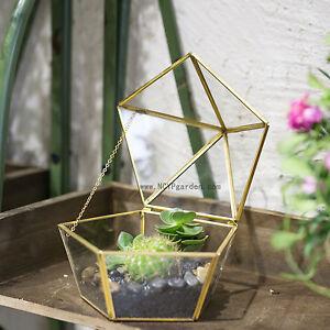 Glass Jewel-boxed Copper Clear Shape Glass Terrarium Plant Succulent Planter Box