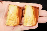 "Hickoryte Jasper Slices 2"" 2 Pieces Lapidary Slab Rock Mineral Specimen Rough"