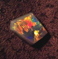 FLASH LIGHTNING RIDGE SEMI BLACK OPAL HARLEQUIN  5++  2,15  Karat.VIDEO