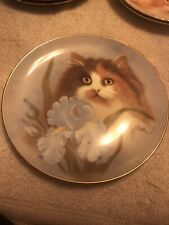 Summer Sunshine Cat Plate Petals & Purrs By Bob Harrison Halmiton Persian Calico